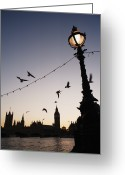 Large Clock Greeting Cards - Houses Of Parliament Viewed Across River Thames Greeting Card by Gary Yeowell