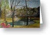 Dogwood Lake Greeting Cards - Hugh McRae Park 2 Greeting Card by Jeff Geen