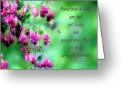 Sentiments Greeting Cards - Hummingbird And Fuschia Sentiments Greeting Card by Darlene Bell