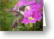 Little Bird Greeting Cards - Hummingbird and Petunias Greeting Card by Bonnie Barry