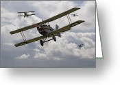 Raf Digital Art Greeting Cards - Hunting Pack Greeting Card by Pat Speirs