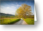Rural Landscapes Greeting Cards - Hyatt Lane in Cades Cove - Smoky Mountains Greeting Card by Dave Allen