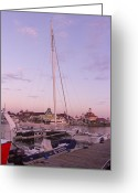 Sailing Fast Greeting Cards - Hydroptere Greeting Card by Heidi Smith