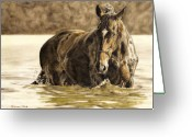 Equines Painting Greeting Cards - Hydrotherapy Greeting Card by Simona Tarakeviciute