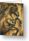 Graphite Reliefs Greeting Cards - Hymne Greeting Card by Paula Collewijn -  The Art of Horses