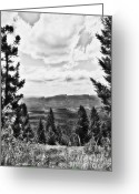 Janie Greeting Cards - I Love  Montana Greeting Card by Janie Johnson