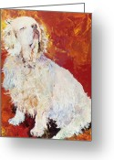 Spaniels Greeting Cards - I Refuse Greeting Card by Pat Saunders-White