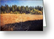 Golden Digital Art Greeting Cards - I Roam Greeting Card by Laurie Search