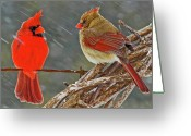 Cardinals Greeting Cards - I told you we should winter in Florida but noooo Greeting Card by Ron  McGinnis