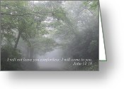 Diannah Lynch Greeting Cards - I Will Not Leave You Comfortless Greeting Card by Diannah Lynch
