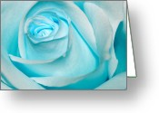 Claire Copley Greeting Cards - Ice Blue Rose Greeting Card by Pixie Copley