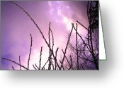 Sunset Scenes. Digital Art Greeting Cards - Ice Branches3 Greeting Card by Linnea Tober
