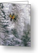 Endurance Greeting Cards - Ice Climbing In The South Fork Valley Greeting Card by Bobby Model