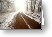 Cypress Hills Provincial Park Greeting Cards - Ice fog in Cypress Hills Provincial Park of Saskatchewan Greeting Card by Mark Duffy