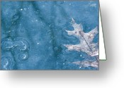 Bare Trees Greeting Cards - Ice Reflections 2 Greeting Card by Laura Yamada