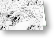 Photoaday Greeting Cards - Ice Storm Sketches No. 1 Greeting Card by Rachel Rausch Johnson