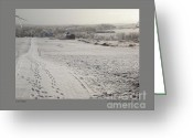 Storm Prints Greeting Cards - Ice Vista Greeting Card by Patricia Overmoyer