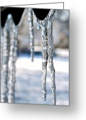 Storm Prints Greeting Cards - Icicles Greeting Card by Johnny Laws