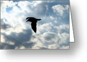 Lone Gull Greeting Cards - If I Could Fly Greeting Card by Joe  Triano