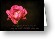 Pink Carnations Greeting Cards - If I had a single... Greeting Card by Cathie Tyler
