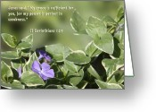 Flower Blossom Greeting Cards - II Corinthians 12 vs 9 Lavender Flower Greeting Card by Linda Phelps