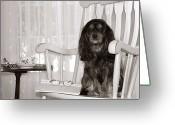 Spaniel Print Greeting Cards - Ill be here waiting for you Greeting Card by Daphne Sampson