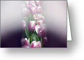 Designers Choice Photo Greeting Cards - Illusion  Greeting Card by Don  Wright