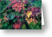 Fall Photographs Greeting Cards - Illusion Or Reality Greeting Card by Louie Rochon