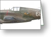 Curtiss Kittyhawk P-40 Greeting Cards - Illustration Of A Curtiss P40-c Warhawk Greeting Card by Chris Sandham-Bailey