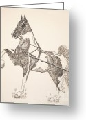 National Drawings Greeting Cards - Im a Show Stopper Greeting Card by Suzanne Francis