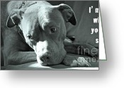 Pit Bull Greeting Cards - Im sad when youre sad Greeting Card by Gwyn Newcombe