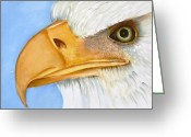 One Of A Kind Ceramics Greeting Cards - Image 1147b Bold Eagle 1 Greeting Card by Wilma Manhardt