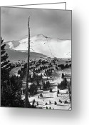 "\""colorado Resort\\\"" Greeting Cards - Imperial Bowl and Peak 8 at Breckenridge Resort Colorado Greeting Card by Brendan Reals"
