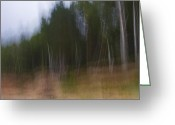Gabor Pozsgai Greeting Cards - Impressionist birch wood Greeting Card by Gabor Pozsgai