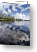 Cumulus Greeting Cards - In A Dream Greeting Card by Debra and Dave Vanderlaan