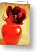 Tulips Greeting Cards - In a vase Greeting Card by Cathie Tyler