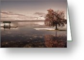 Red Maple Greeting Cards - In Dreams Greeting Card by Lourry Legarde