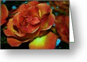 S. California Greeting Cards - In Flames Greeting Card by Helen Carson