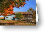 Red Autumn Trees Greeting Cards - In midst of change Greeting Card by Robert Pearson