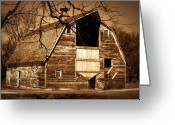 Old Wooden Fence Greeting Cards - In Need Greeting Card by Julie Hamilton