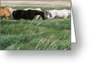 Horse Art Pastels Greeting Cards - In Rhythm Greeting Card by Kim McElroy