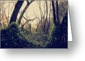 Fairytale Greeting Cards - In the Forest of Dreams Greeting Card by Laurie Search