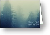 Biggest Tree Greeting Cards - In the mist - cross procesing Greeting Card by Hideaki Sakurai