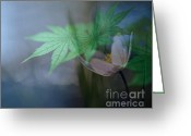 Blues And Greens Greeting Cards - In The Mist Greeting Card by Linda  Lane - Bloise