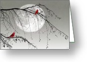 Cardinals Greeting Cards - In The Misty Moonlight Greeting Card by Thomas York