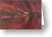 Water Scenes Greeting Cards - In the Spotlight Greeting Card by Cody DeLong