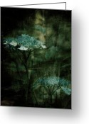 Mixed Media Photo Greeting Cards - In the Still of the Night Greeting Card by Bonnie Bruno