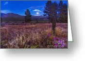 Moonrise Digital Art Greeting Cards - In the Twilight Greeting Card by Rhonda Strickland