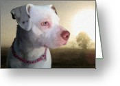 Bull Terrier Greeting Cards - In Thought Greeting Card by Michael Tompsett
