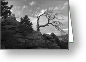 Fineart Canvas          Greeting Cards - In Time There Is Motion Black and White  Greeting Card by James Steele